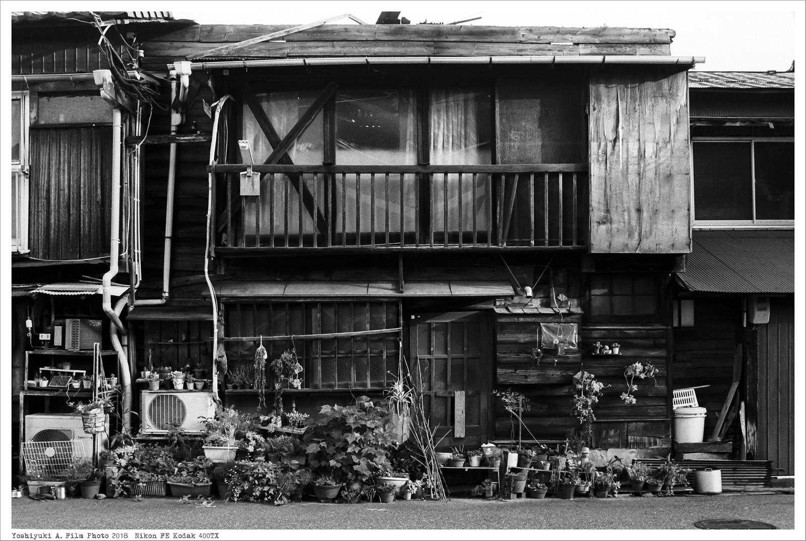 北九州市小倉 到津市場 Nikon_FE_Kodak_400TX__58
