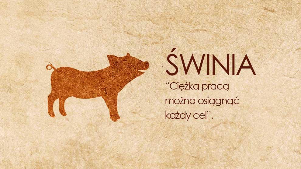 Horoskop chiński Świnia (Dzik)