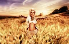 ~ Feel her land ~