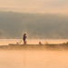 Fisherman at sunrise on foggy Lake Arthur.