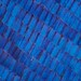 Butterfly wing scales by Luciano Richino