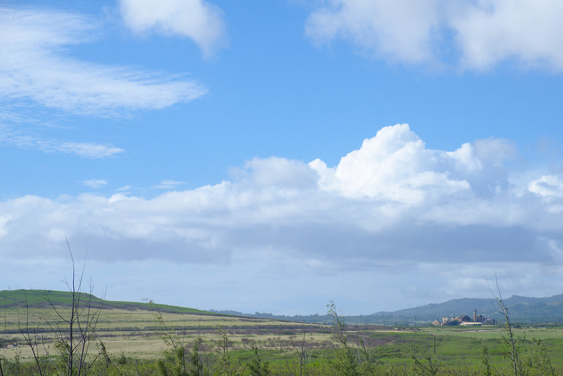 View from Makauwahi Cave walk