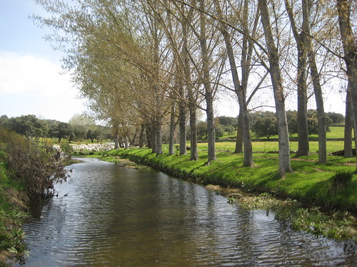 Arroyo de la Víbora. Real de la Jara (Sevilla)