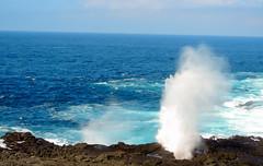 The blowhole, Punta Suarez; Espanola Island