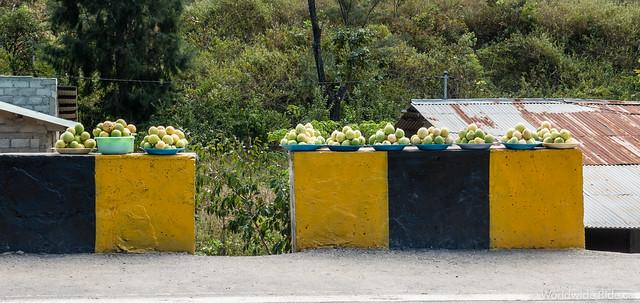 Timor-Leste-15