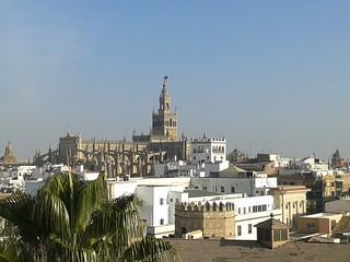 Vista desde la Torre del Oro de la Giralda. Sevilla