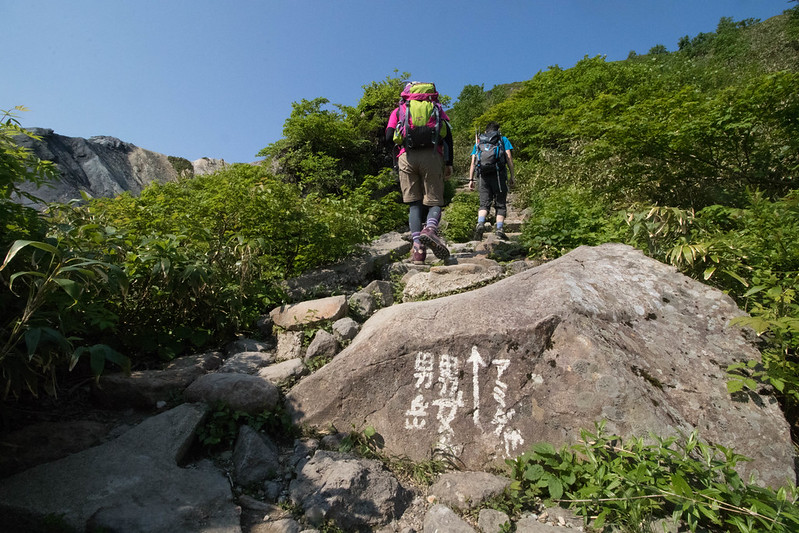 20170708-秋田駒ヶ岳_0118.jpg