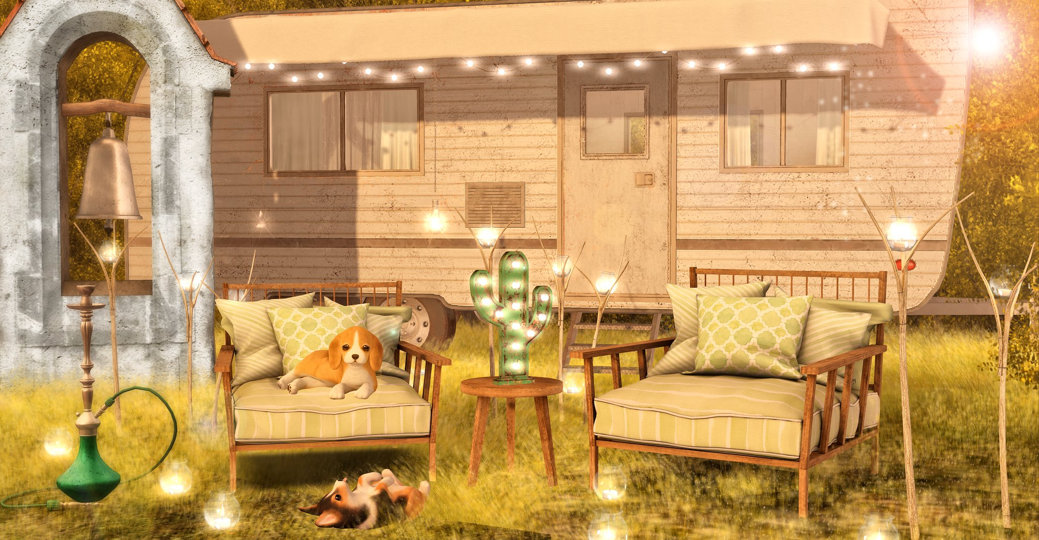 Camping Evenings
