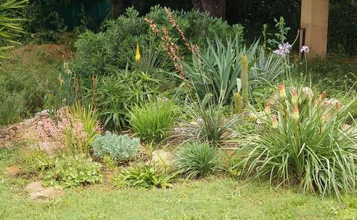 les jardins sont beaux en mai ! - Page 6 40667443670_2bef8d7daf