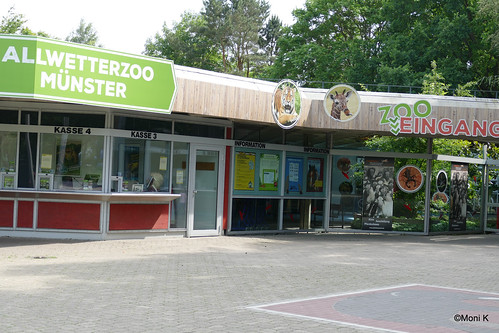 01-Allwetterzoo Münster
