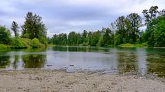 Willamette River flowing through north Eugene, Oregon