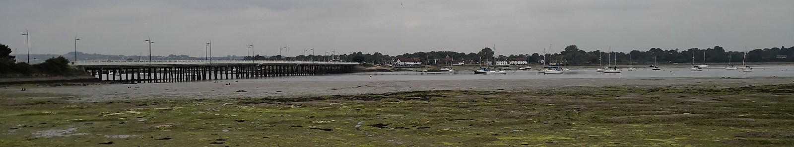 Banner image for Day 2 - East Horsley to Hayling Island
