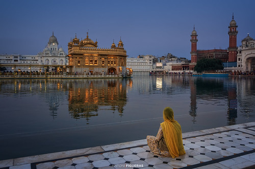india punjab amritsar harmandirsahib goldentemple sunset bluehour reflections woman sari yellow sonya7rii sony1635f4