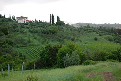 Villa North View