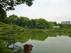 Audino in Fukagawa, Tokyo 106 (Kiyosumi Garden)