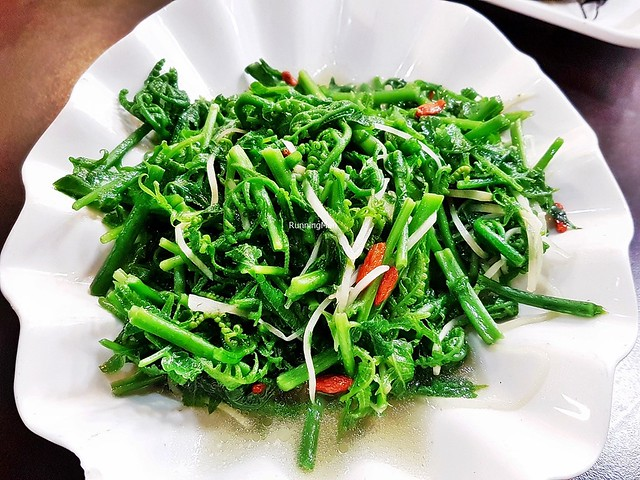 Guo Mao Vegetable Fern