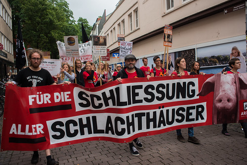 Münster für die Schließung aller Schlachthäuser 2018