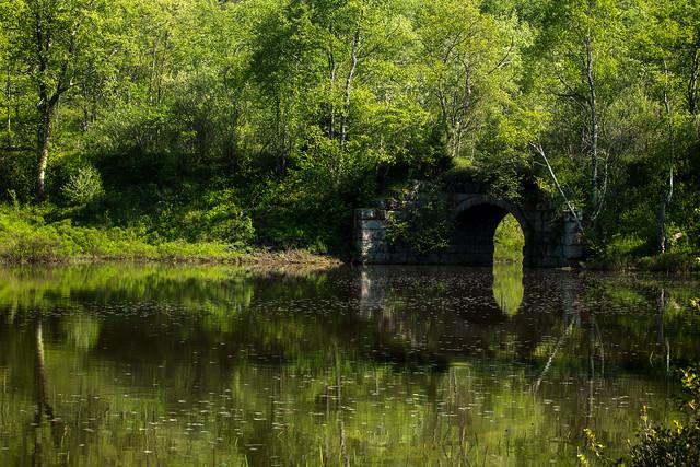 Pendleton Lake  Reflections, Canon EOS 6D, Canon EF 70-200mm f/2.8 L