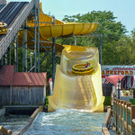 Photo of Splash