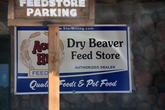 Dry Beaver
