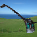 Dippy on the Great Orme