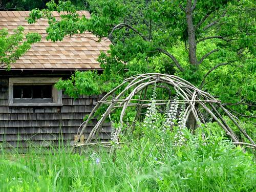 plant hut