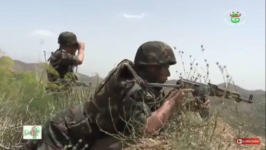 موسوعة الصور الرائعة للقوات الخاصة الجزائرية - صفحة 64 28806400848_eb829aea98_b