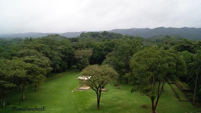 Z.A. Bonampak, Chiapas