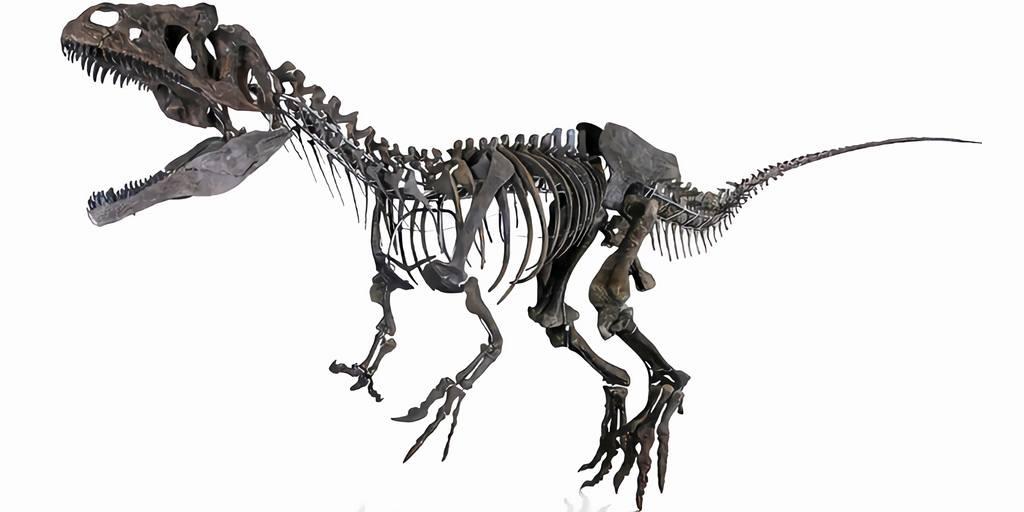 squelette-dinosaure-enchère-paris