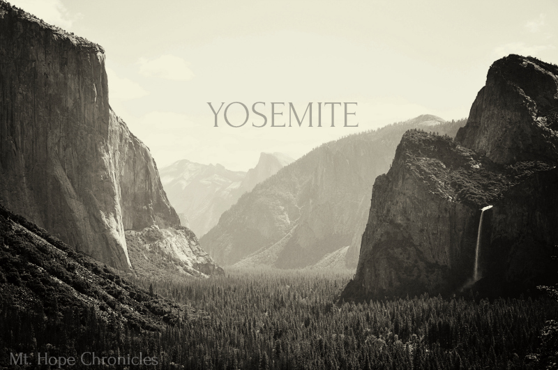 Yosemite @ Mt. Hope Chronicles