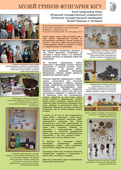 Poster about our Museum of Fungi