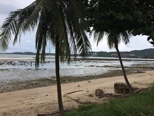 サムイ島 今日のお天気 6月17日 波風でてます&干潮