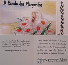 A escola das Margaridas