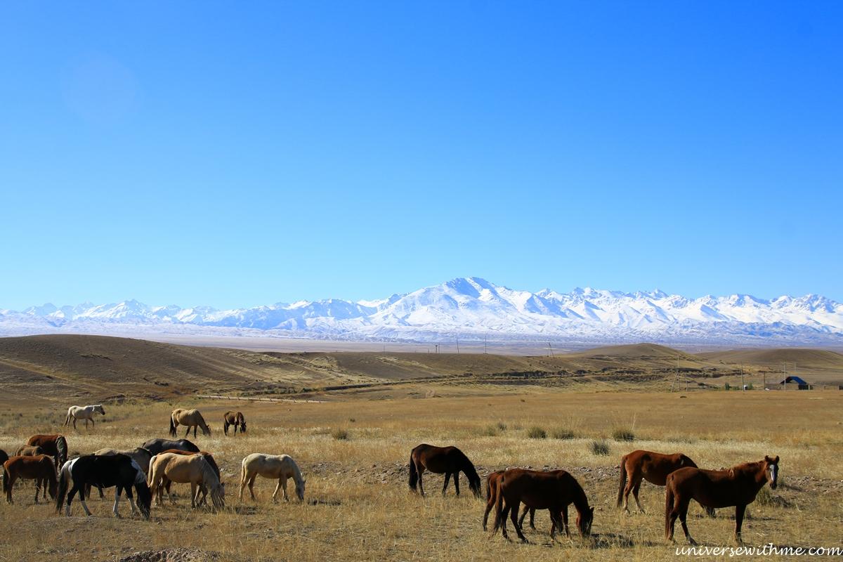 Kyrgyzstan travel_341