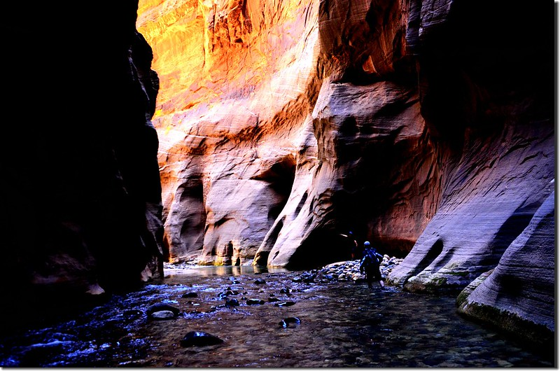 The Narrows, Zion National Park (44)
