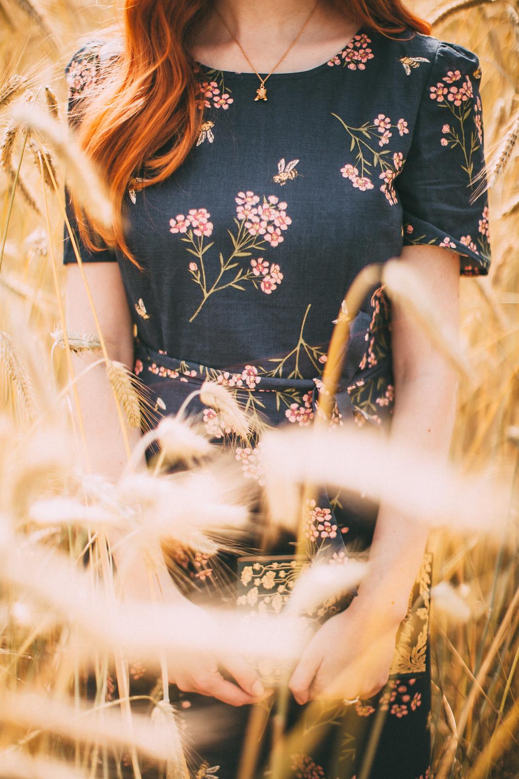 wheat shoot-13