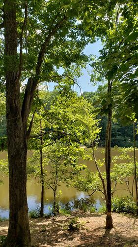 charlotte unitedstatesofamerica sunny kingfisherpond rockyriverroad northamerica woods northcarolina afternoon mensapicnic outdoor reedycreekpark usa mecklenburgcounty nc