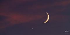 Crescent Moon & Venus