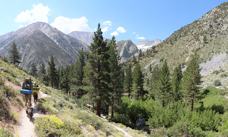 We're back at the Walk-In Campground where we started, on the North Fork Big Pine Creek Trail