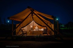 Accomodations From $800 per night . . . #expensivetents #glamping #tent #underthestars #governorsisland #allmodcons #nyc #pixielatedpixels #chrislord #chrislorddotnyc #nycphotographer #creativeimages #artphotos #newyorkcityphotography #weekendgateaway #ex