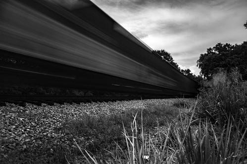 Florida Train