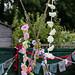 Scotland's Gardens Craigintinney Telferton July 2018 -80