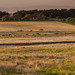 Countryside near Blackridge