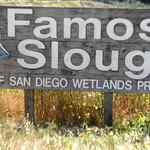 2005-04 Famosa Slough 1