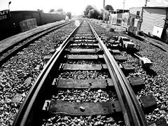 St-Henri Train Tracks