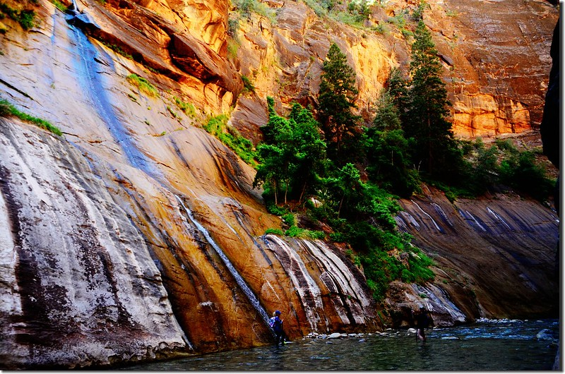 Mystery Canyon Falls,The Narrows, Zion National Park (1)