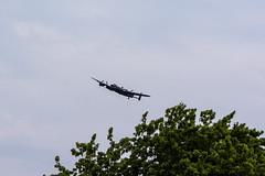 Lancaster bomber over trees