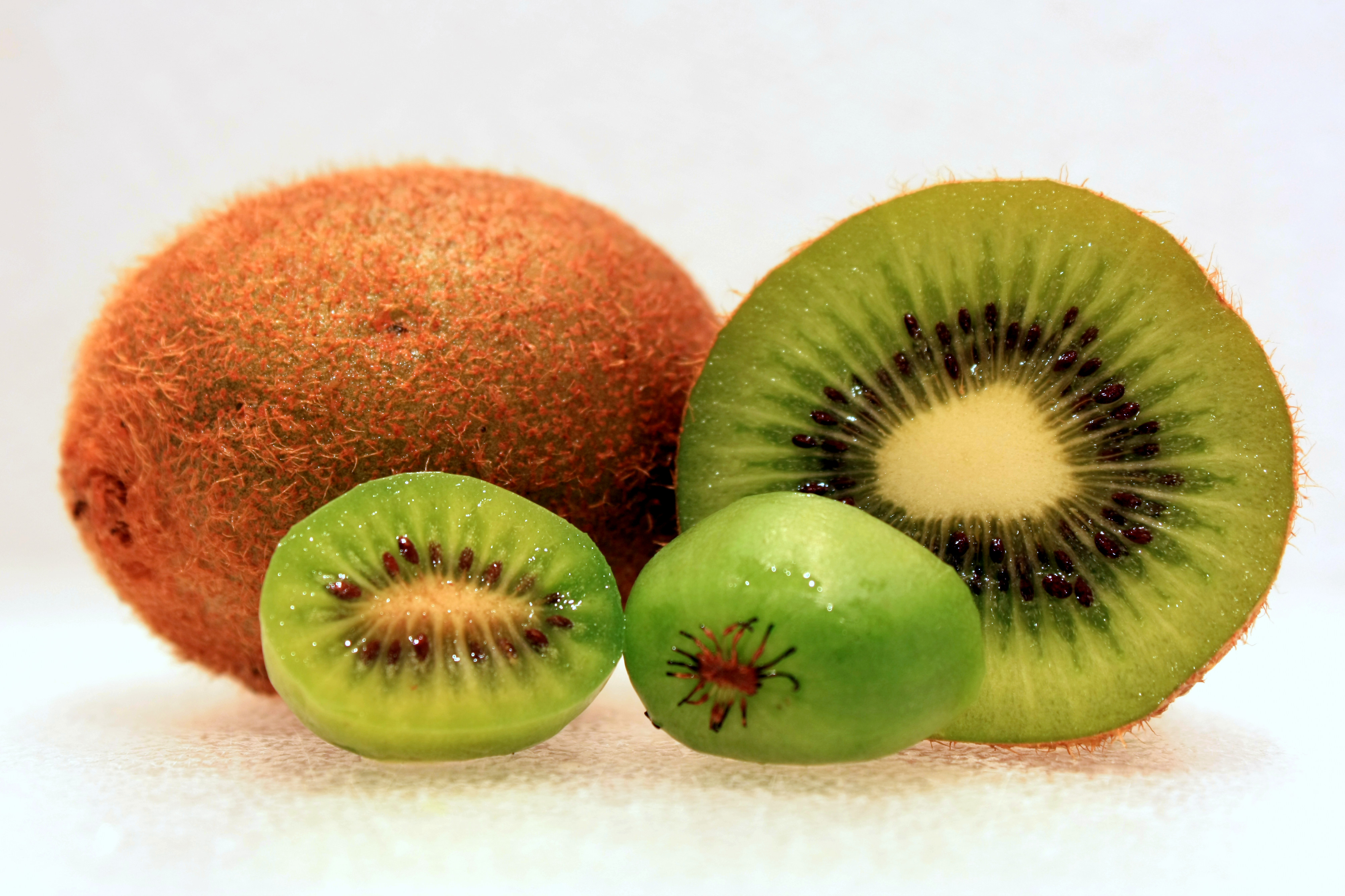 The larger fuzzy kiwifruit at rear compared to the smaller kiwi berry (hardy kiwifruit). Photo taken on March 15, 2010.