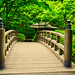 Japanese Footbridge