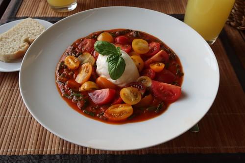 Tomateneintopf mit frischen Tomaten und Burrata